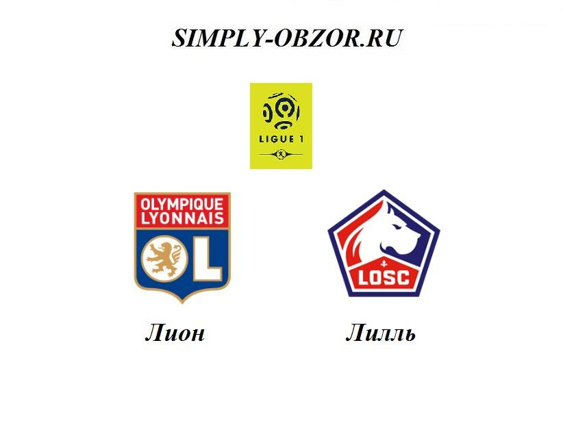 lion-lill-03-12-19-pryamaya-translyaciya